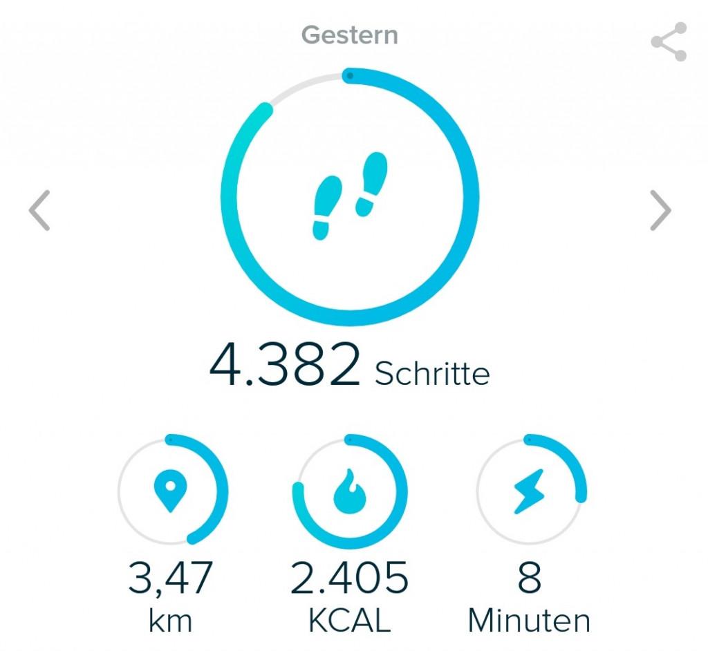 Screen Fitbit App bearbeitet Basisifunktionen
